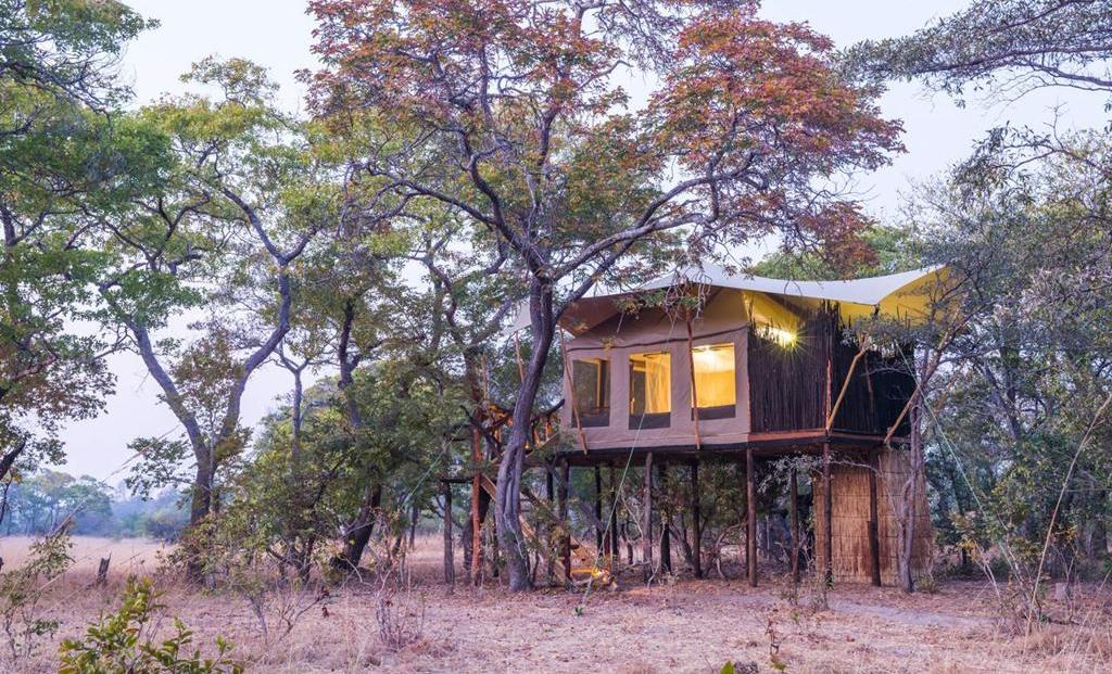 Fig Tree Bush Camp - tenthuisje op palen