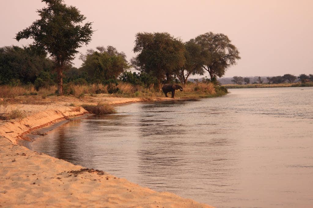 Safari reizen Zambia - Kanosafari Kiambi waarbij u kampeert op een eilandje in de rivier