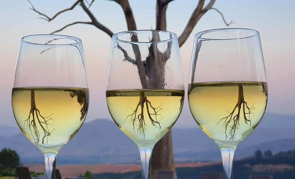 Kings Walden - wijnglazen