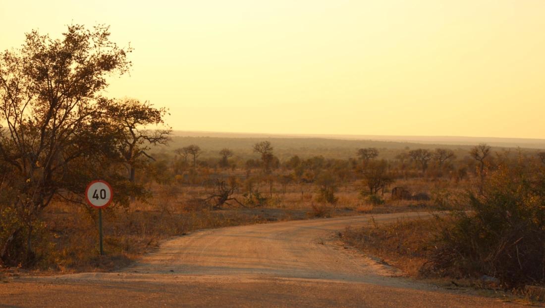 Kruger NP - Maximum snelheid op onverharde wegen is 40 km/uur