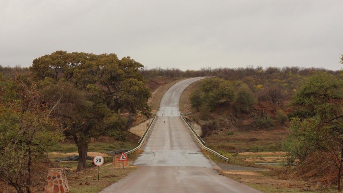Kruger National Park - Brug