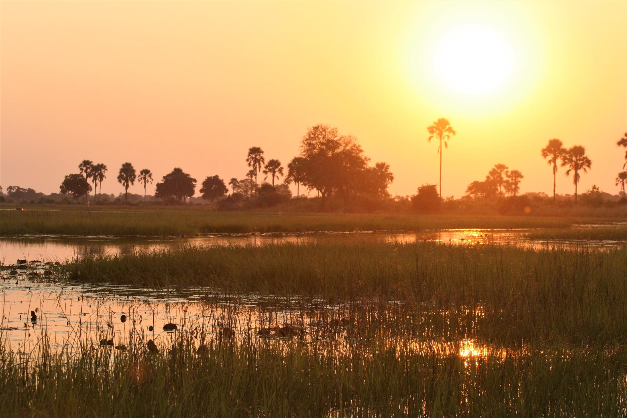 Rondreizen Zuid-Afrika + Botswana - Okavango Delta - Zonsondergang