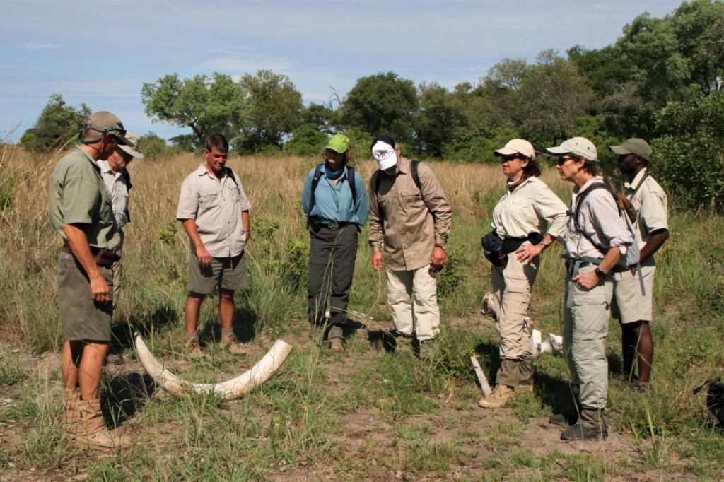 Leukste activiteiten Botswana - Okavango Delta - Bushwalk