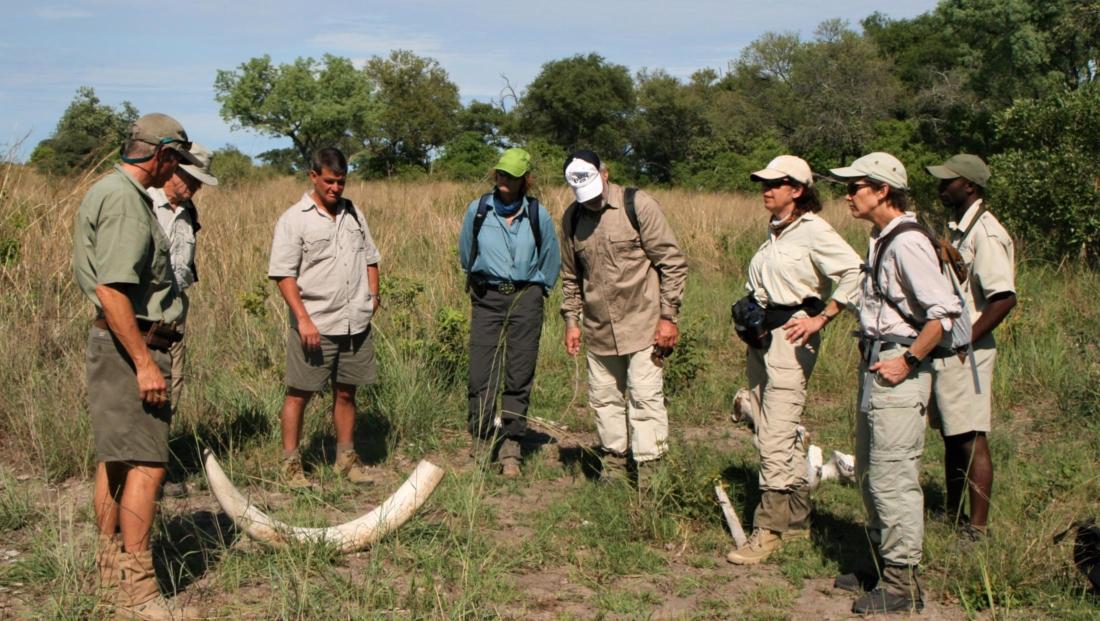 Okavango Delta - Bushwalk