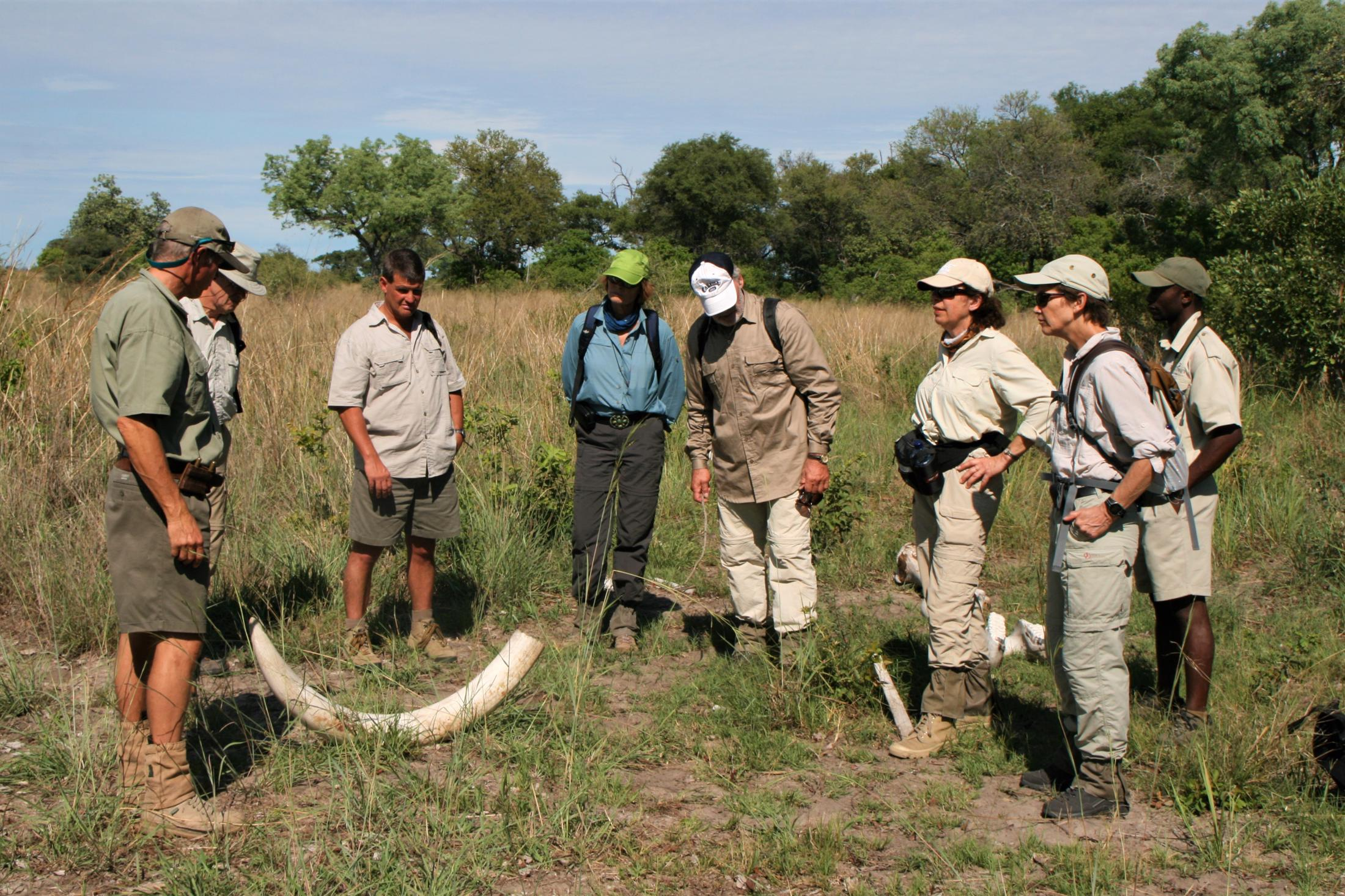 Rondreizen Botswana - Okavango Delta - Bushwalk