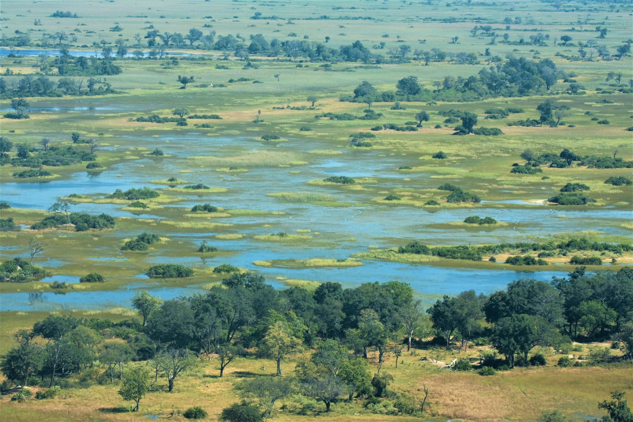 Individuele reizen Botswana - Ongerepte wildernis Okavango Delta vanuit de lucht