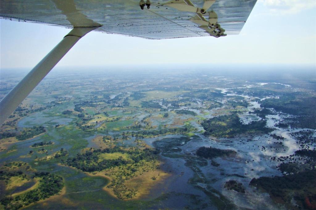 Nieuws uit Afrika - Okavango Delta - Uitzicht vanuit vliegtuig