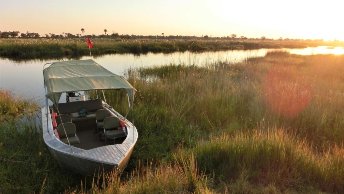 Okavango Delta - Boottocht