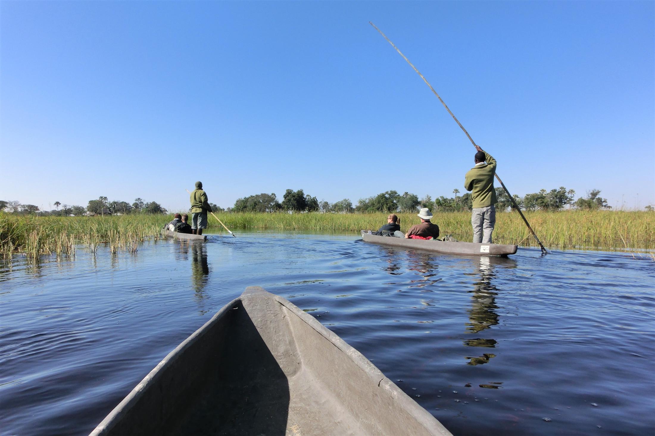 Fly-drive reizen Botswana - Okavango Delta - Mokorotocht