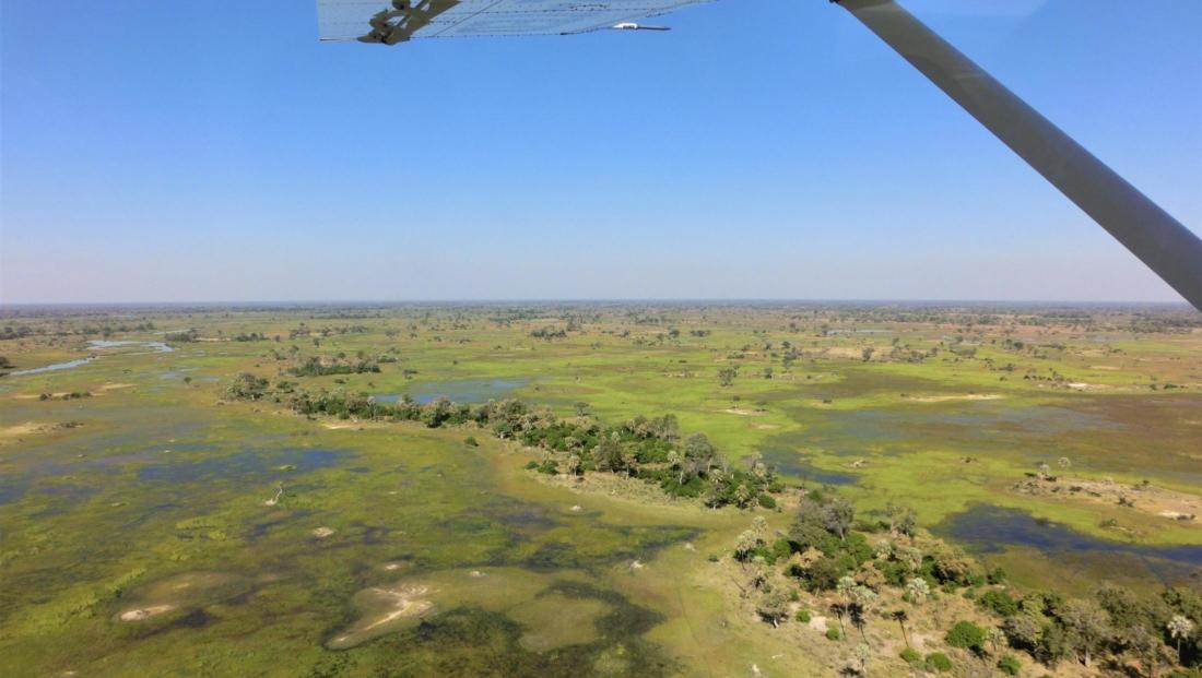 Okavango Delta - Uitzicht over de Delta vanuit vliegtuigje