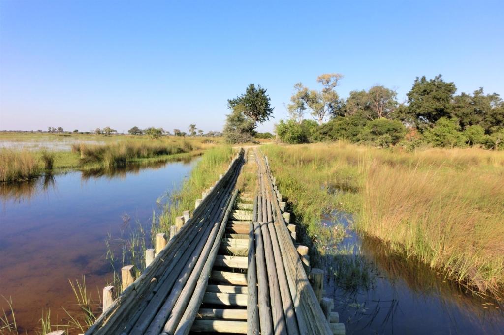 Leukste activiteiten Botswana - Okavango Delta - Houten brug