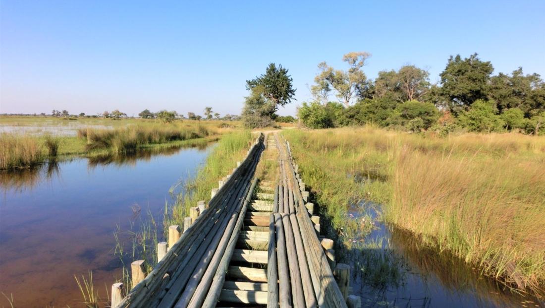 Okavango Delta - Houten brug