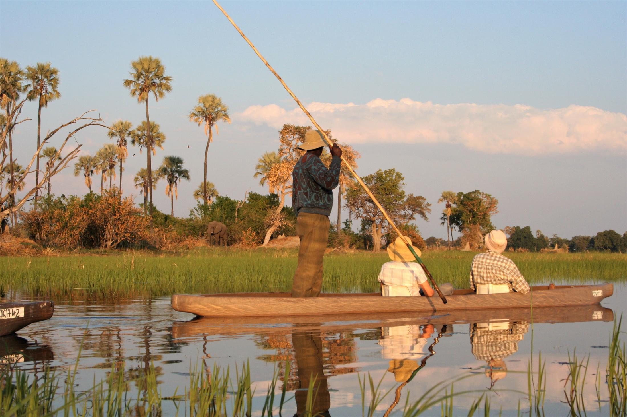 Safari & Natuur reizen Afrika - Mokortocht in de Okavango Delta, Botswana.