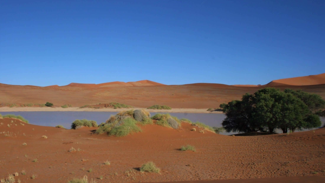 Sossusvlei - Water in de vlei is zeldzaam