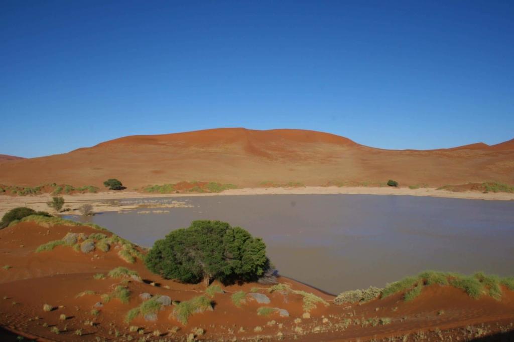 Sossusvlei in het Namib Naukluft Park - Een zeldzame laag water in de vlei