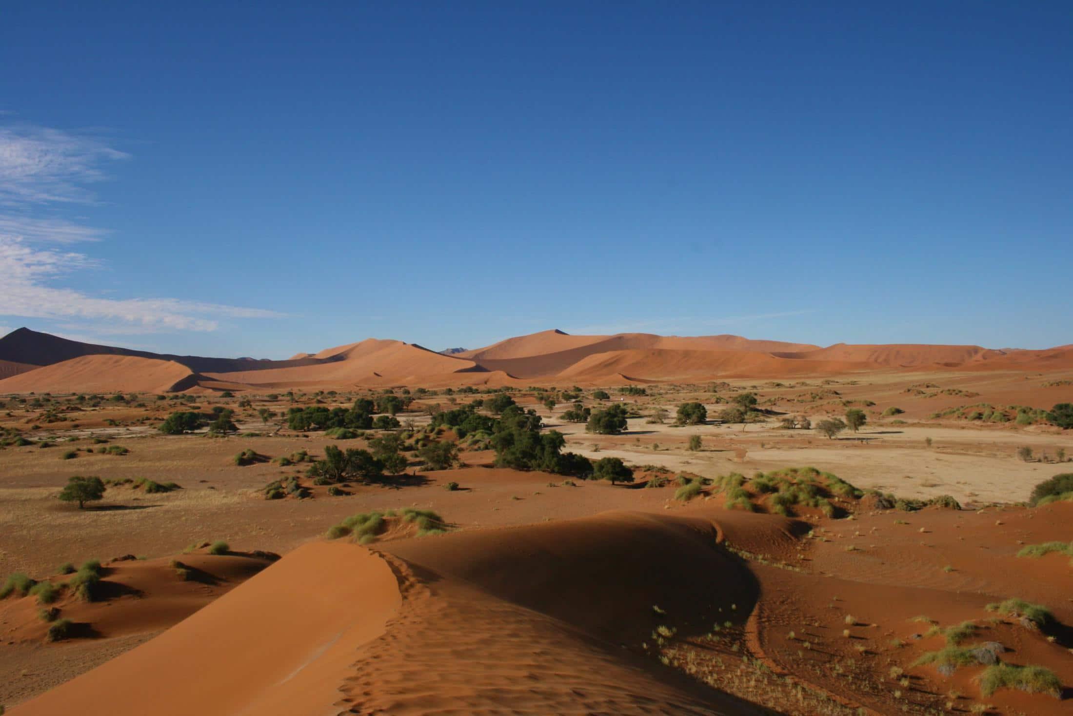 Rondreizen Zuid-Afrika + Namibië - Prachtig landschap van de Sossusvlei