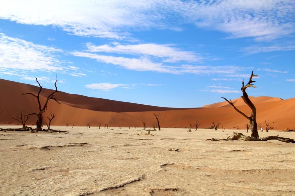 Bezienswaardigheden Namibië - Sossusvlei - De dode bomen in de Dead Vlei