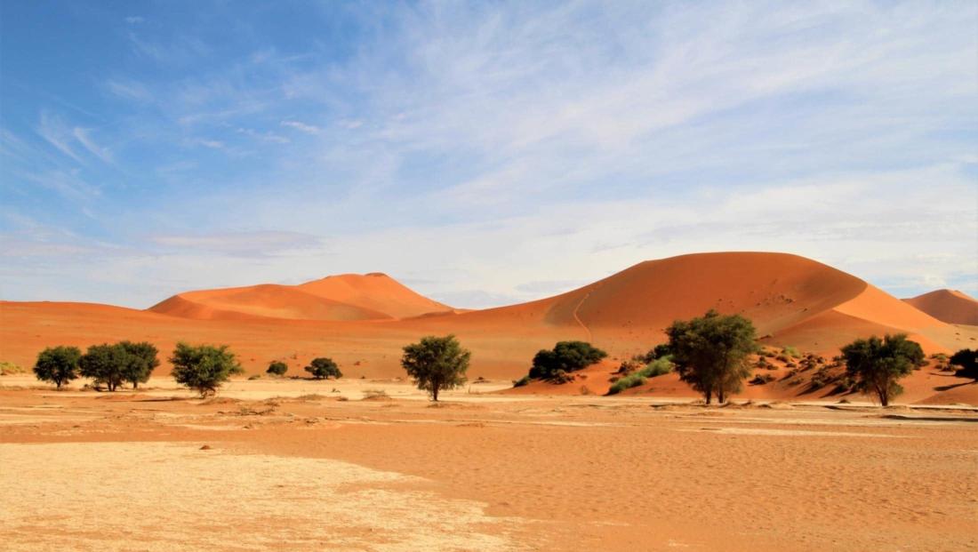 Sossusvlei - Hier en daar groeien er wel bomen in deze woestijn