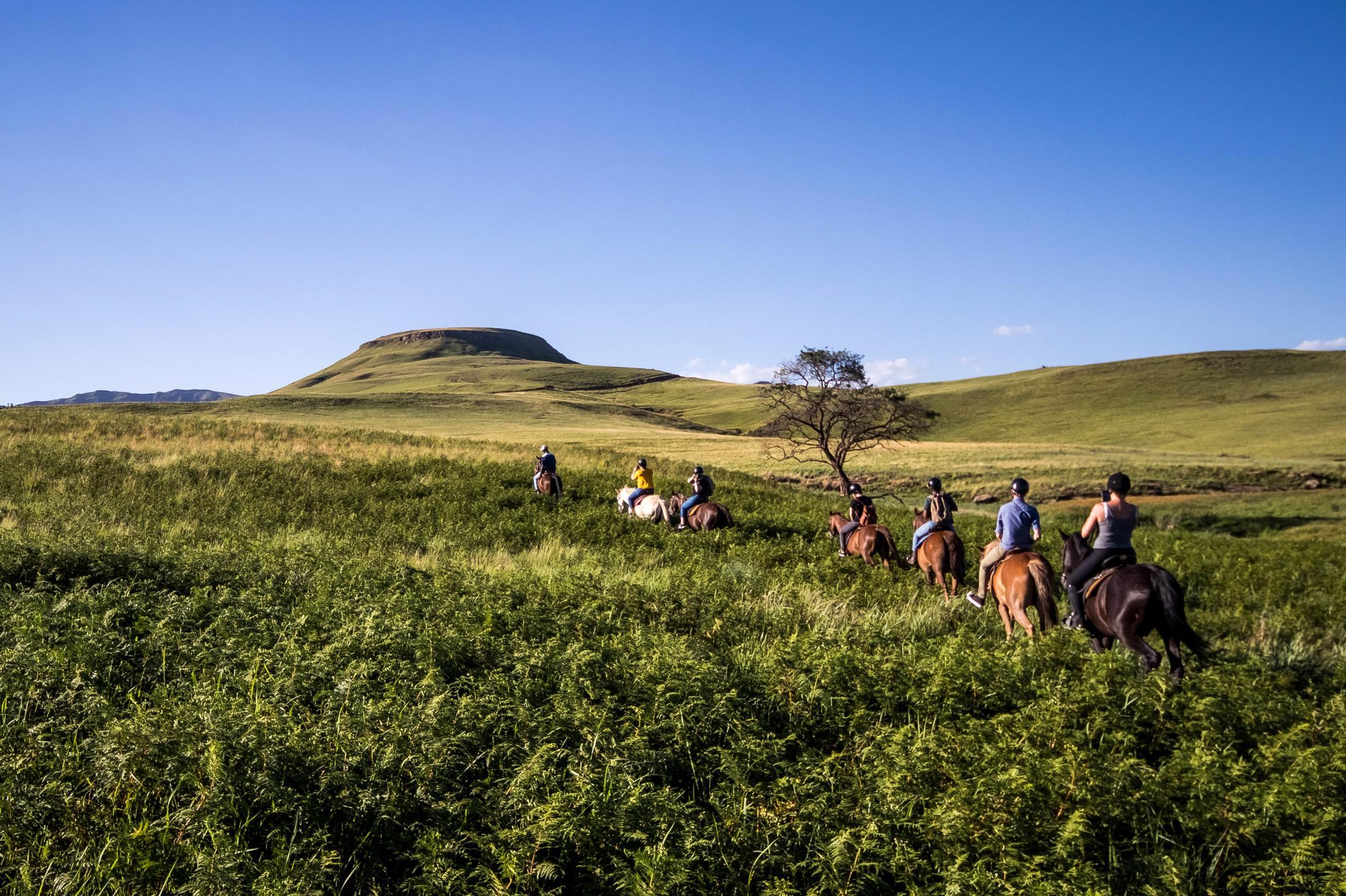 Paarden safari Afrika - Paardrijden in de Drakensbergen (Northern Horse @ Montusi)