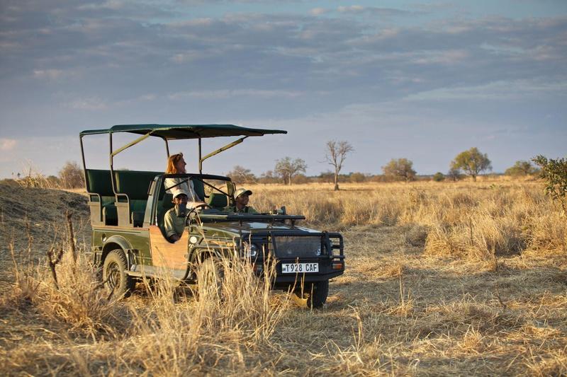 Safari reizen Tanzania - Wildrit in open safari voertuig bij Ruaha River Lodge
