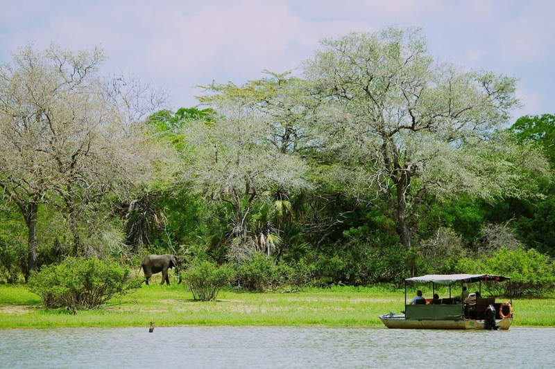 Safari reizen Tanzania - Boottocht over de rivier bij Rufiji River Camp