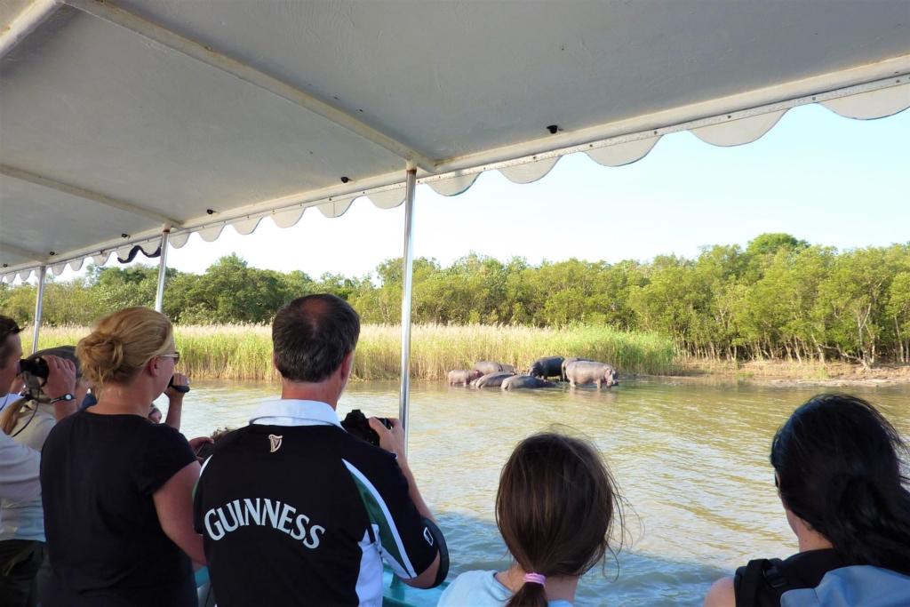Wildparken Zuid-Afrika - Isimangaliso St Lucia - Nijlpaarden vanuit een boot