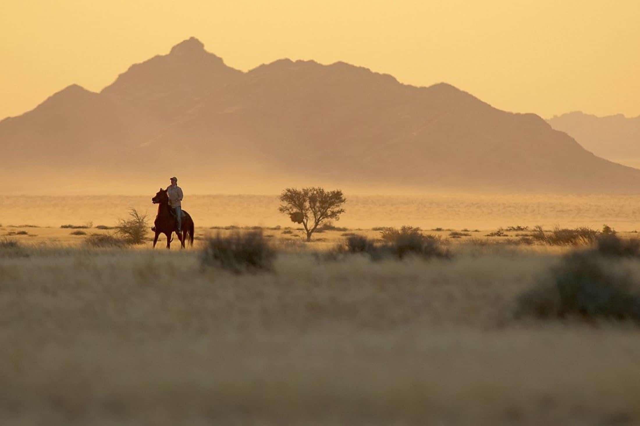 Paarden safari Afrika - Paardrijden in het landschap van de Namib woestijn,Desert Homestead
